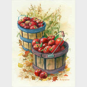 Apple Basket and Cornstalks