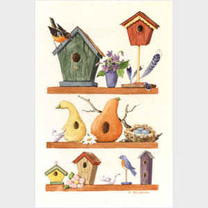 Birdhouse Display I