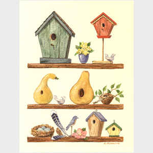 Birdhouse Display II