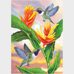 Black Chinned Hummingbirds and Golden Heliconia