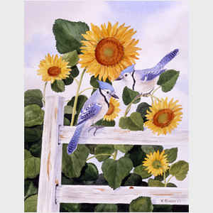 Bluejays and Sunflowers