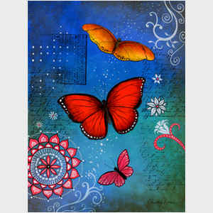 Christine Christine Kerrick  Butterflies and Birds