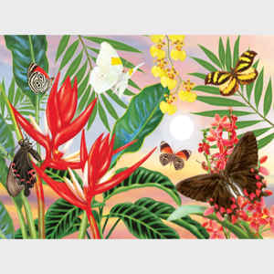 Butterflies and Red Christmas Heliconia
