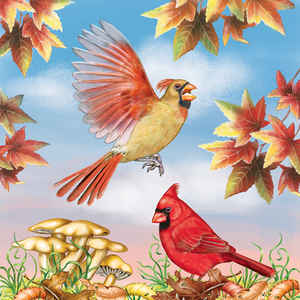 Cardinals in Autumn