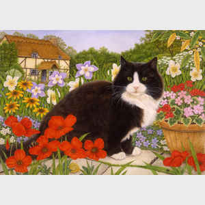 Anne Anne Mortimer Country Cats