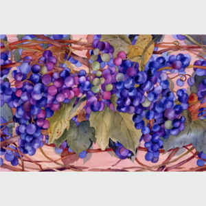Grapes - horizontal