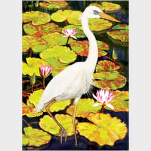 Great White Heron in Water Lilies