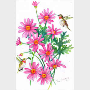 Hummingbirds and Daisies