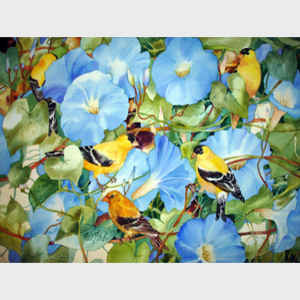 Morning Glories and Goldfinch