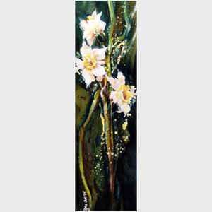 Paperwhite Jonquils