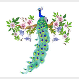 Peacock with Passionflower