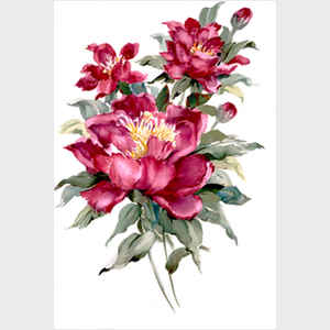 Red Peonies I