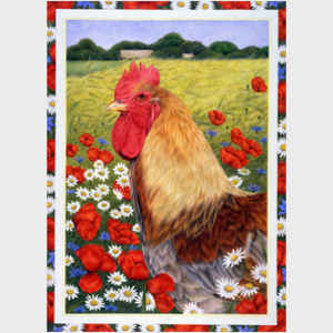 Rooster in Field
